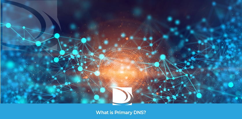 What is Primary DNS?